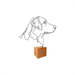 Profilo Cane Standard